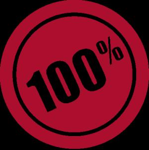 albumThumbs-56GFA-icons2011-100percent-300x302
